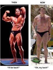 Arnold Schwarzenegger Gay Porn